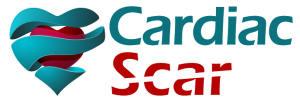 Cardiac Scar